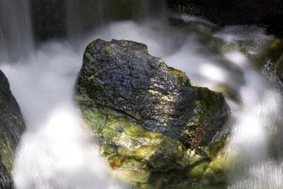 Rock in the Pine Wind Garden in Torrance, CA